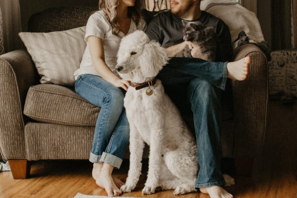 Dog and cat with family